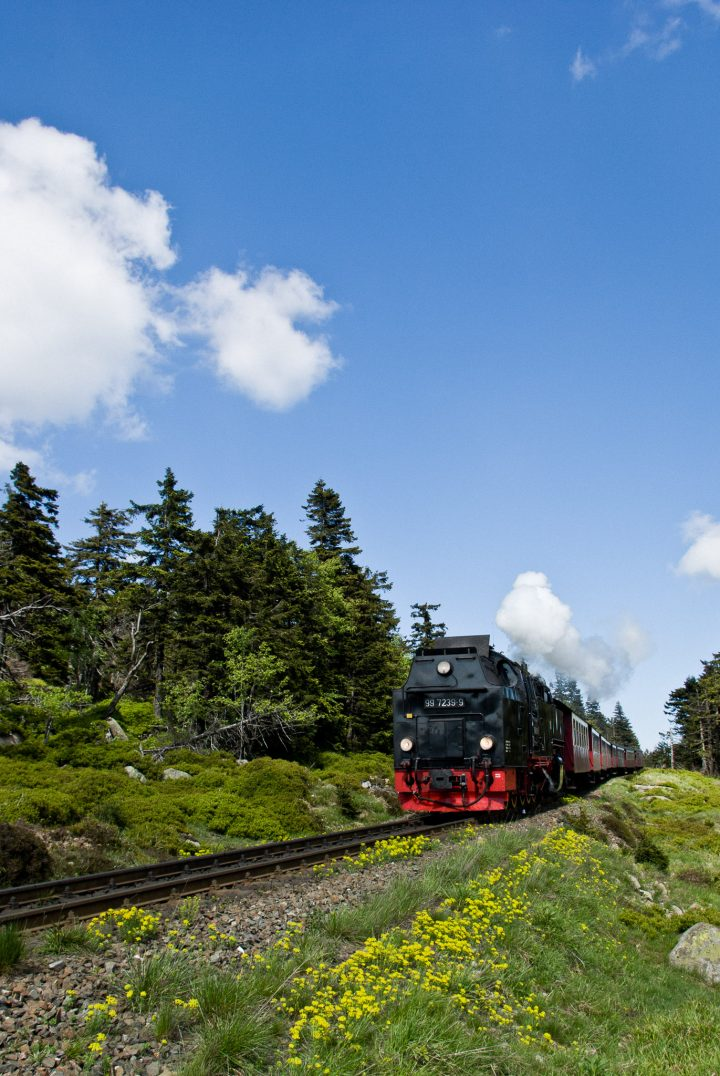 Harzer Schmalspurbahn auf dem Weg auf den Brocken