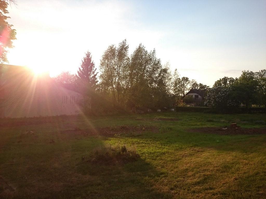 Abendsonne auf unserem Grundstück (leider nur mit dem Handy aufgenommen, bessere Fotos folgen!)